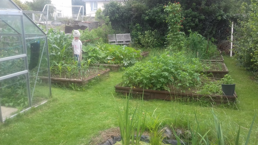 An update from the Garden